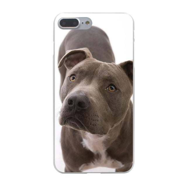 Pitbull Portrait Iphone Case (Multi)