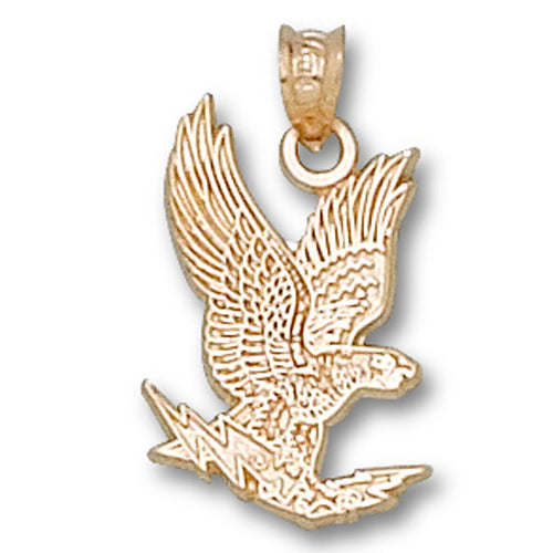 US Air Force Academy FALCON 14 kt Gold Pendant