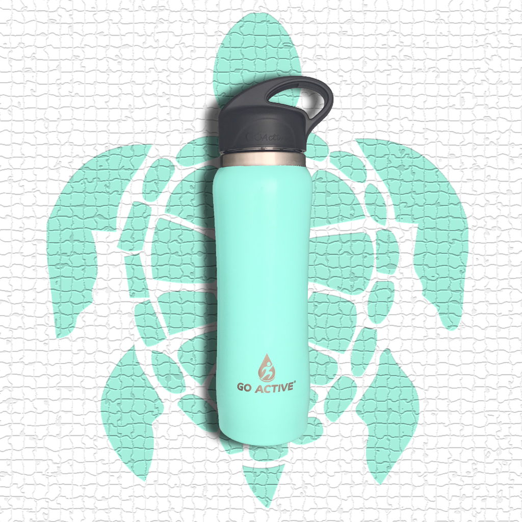 Insulated Water Bottle with Straw - 16oz. Sea Turtle Green