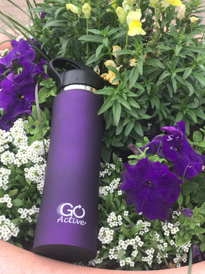 24oz Insulated Bottle with Straw Lid - GO Active Bottles