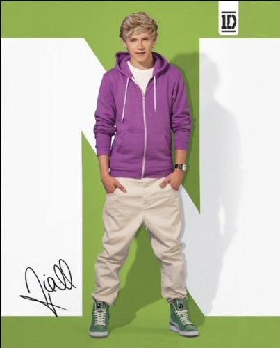 One Direction (Niall) - Mini Poster - 40cm x 50cm