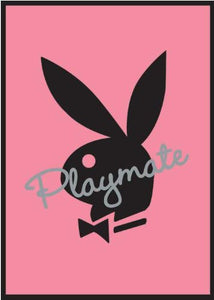 Playmate Pink - Maxi Poster - 61cm x 91.5cm