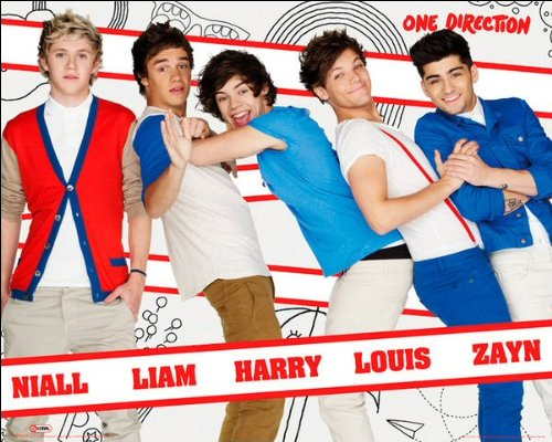 One Direction (Line Up) - Mini Poster - 40cm x 50cm