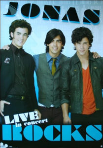 Jonas Brothers Television Poster