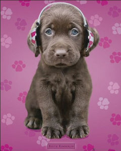 Keith Kimberlin Chocolate Labs Headphones Mini Poster 40x50cm