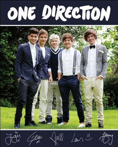 One Direction (Navy) - Mini Poster - 40cm x 50cm