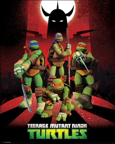 Turtles (Shredder Silhouette)
