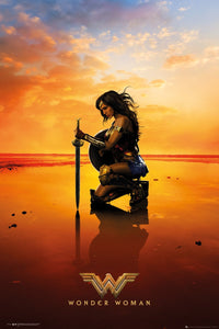 Wonder Woman Kneel Poster multicolour