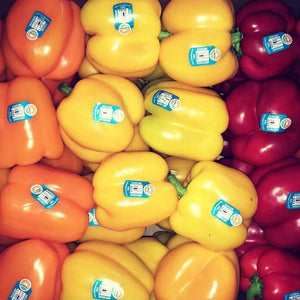 Rainbow Bell Pepper