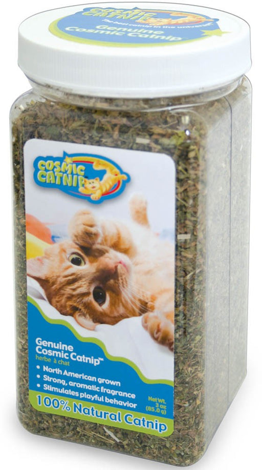 Our Pets Catnip in a Jar