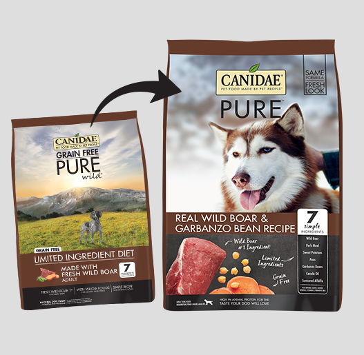 Canidae Pure Grain Free Real Boar Dry Dog Food