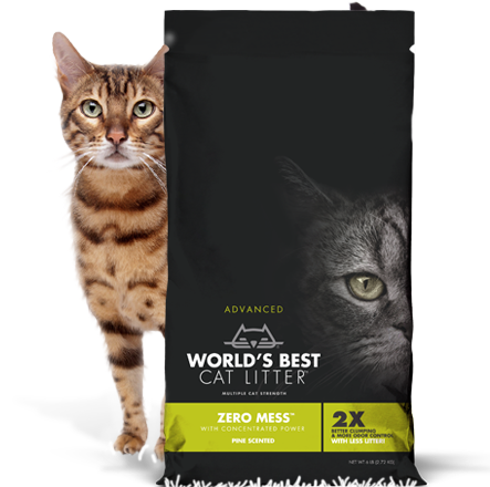 World's Best Litter Zero Mess Pine Scented 24 lb