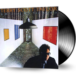 Terry Scott Taylor (OF DANIEL AMOS) - A Briefing For The Ascent (Vinyl)