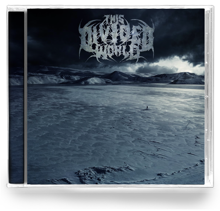 This Divided World - Discography (CD)