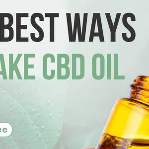 For the Rookies: The Best Ways to Take CBD Oil