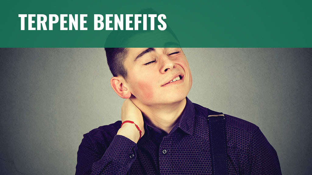 Terpene Benefits