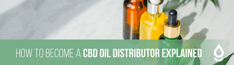 How to Become a CBD Oil Distributor Explained
