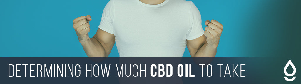 Determining How Much CBD Oil You Should Take