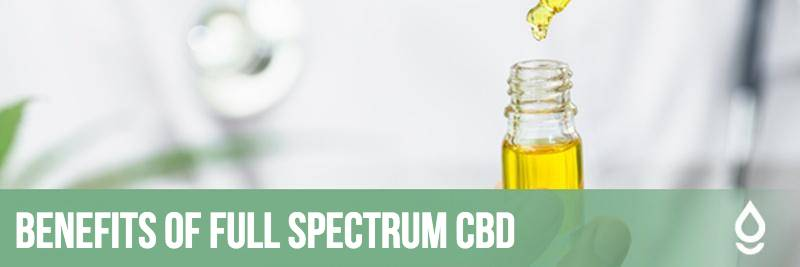 The Benefits of Full Spectrum CBD