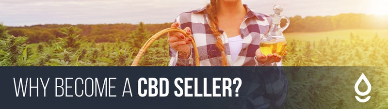 Why become a CBD seller