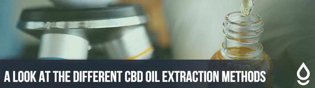 A Look at the Different CBD Oil Extraction Methods
