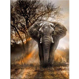 Elephant Diamond Painting Kit