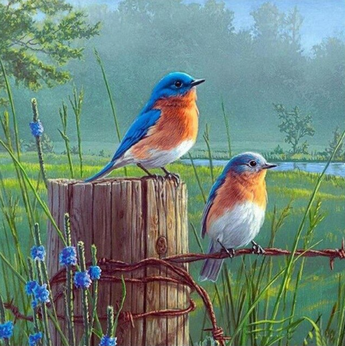 Birds on a Wire Diamond Painting