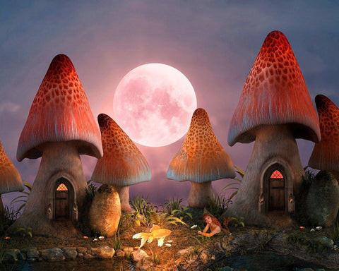 Shroom Village Diamond Painting