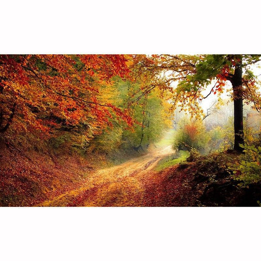Autumn Scenery Round Diamond Painting