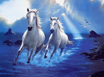 Beautiful White Horses Diamond Painting