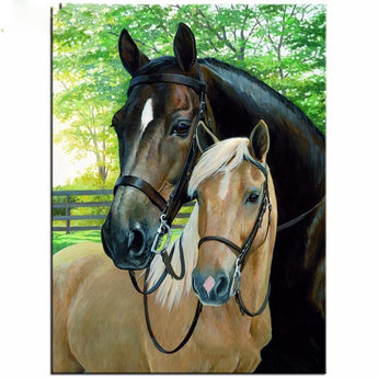 Brown and Tan Horses