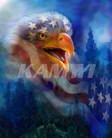 DiamondXpres Eagle and Flag Diamond Painting Kit