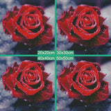 DiamondXpres Glorious Red Rose Diamond Painting