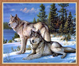 DiamondXpres White / 40*50cm Wolf & Wolves Diamond Painting