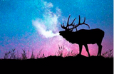 Elk at Sunset Diamond Painting