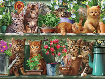 Kittens on a Shelf Diamond Painting