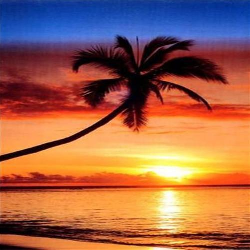 Palm Tree Sunset Diamond Painting