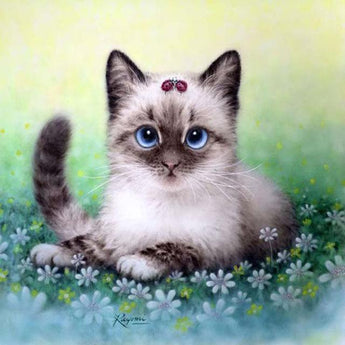 Pretty Kitty Diamond Painting