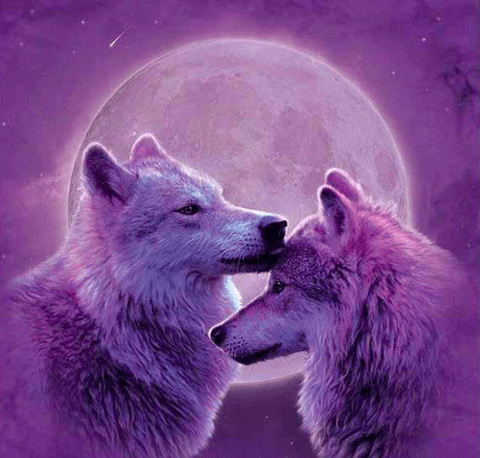 Purple Wolves
