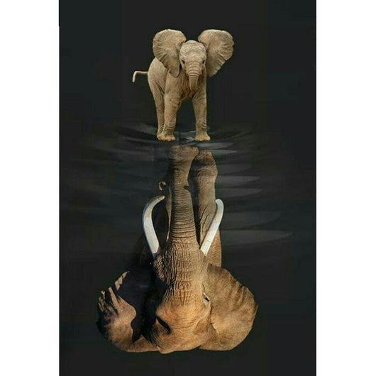 Reflection In Water Elephant