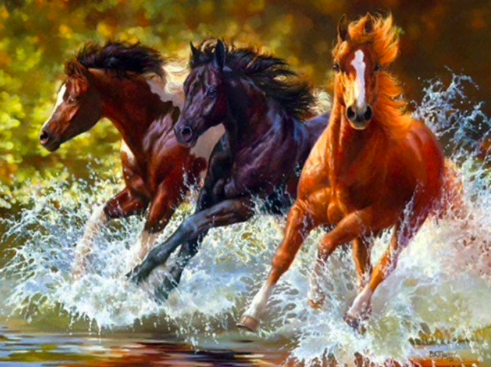 Three Wild Horses Diamond Painting