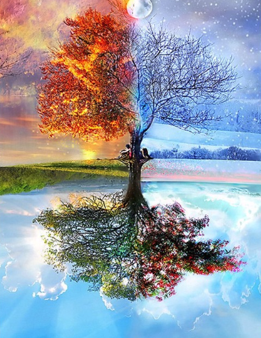 Tree Reflection Diamond Painting Kit