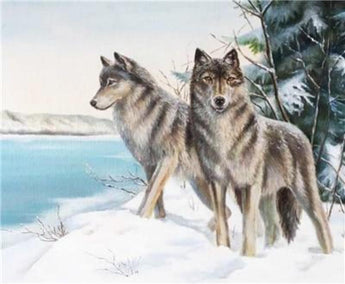 Two Wolves in the Snow Diamond Painting