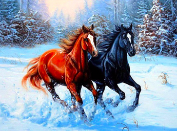 Wild Horses Diamond Painting