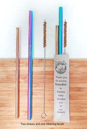 Metal Straws-Smoothie & Cocktail Set of 2 with Cleaning Brush