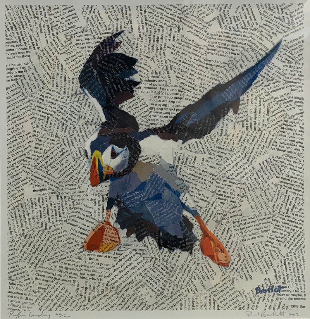 Paul Bartlett 'Puffin Landing'