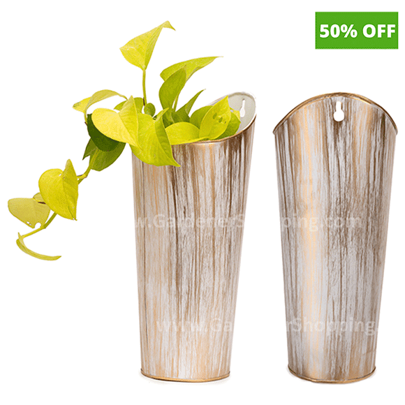 German- Decorative Wall Hanging Planters
