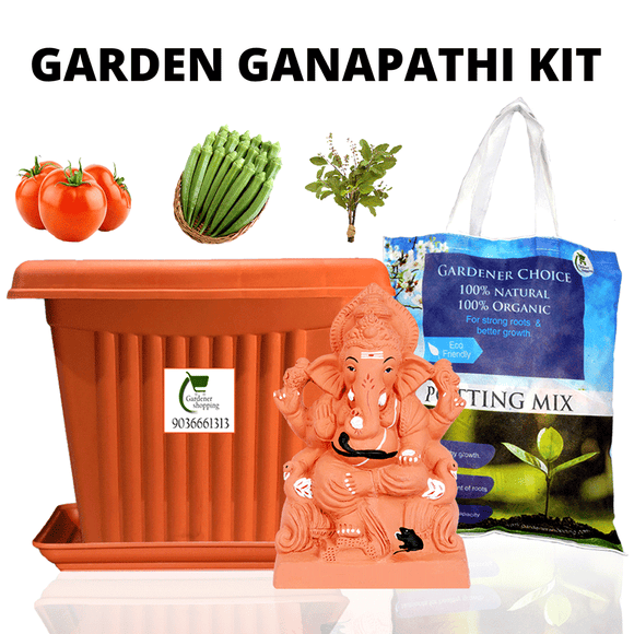 https://www.gardenershopping.com/collections/garden-ganapathi-kit