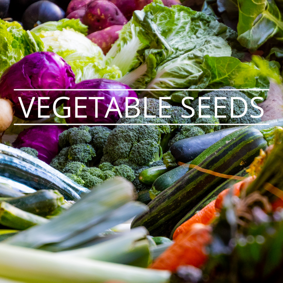 VEGETABLE SEEDS- NON GENETICALLY MODIFIED