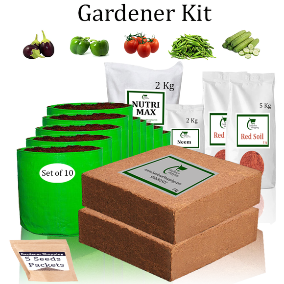 Grow Bags Gardener Kit Value Added- Brinjal Round Purple, Capsicum Green, Round Tomato, Green Chilli Small, Cucumber green (Buy Complete Grow kit/ Growing kit Online India) - Gardenershopping